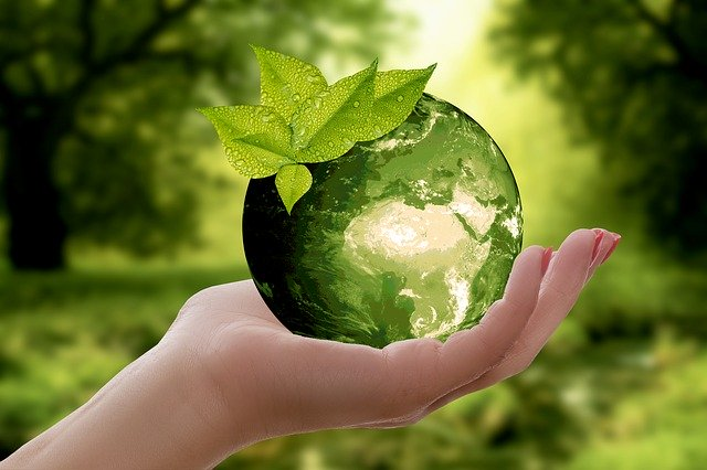 How SMEs could leverage sustainability to drive innovation